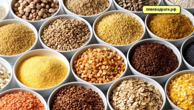 Зерновые и злаковые культуры